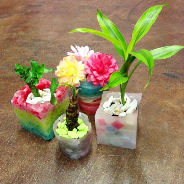 キャンドルと観葉植物